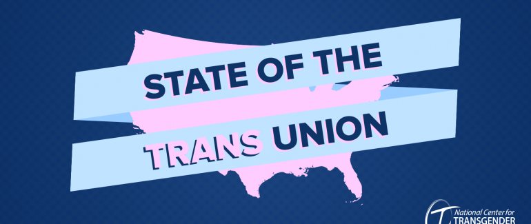 """A graphic showing the United States' silhouette in pink, with text reading """"State of the Trans Union"""" on top."""