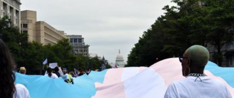 Giant trans flag unfurling before White House